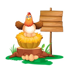 A hen hatching eggs with a wooden signboard vector