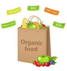 Bag With Organic Food vector image