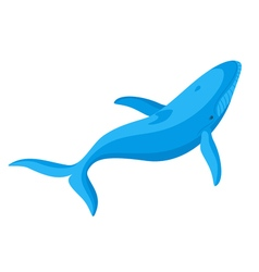 flat style of whale vector image