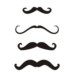 Set of curly vintage retro gentleman mustaches vector image