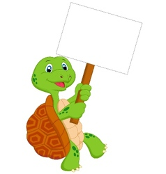 Turtle cartoon holding blank sign vector image vector image