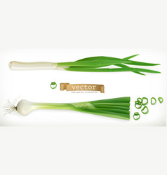 green onion vegetable 3d icon vector image vector image