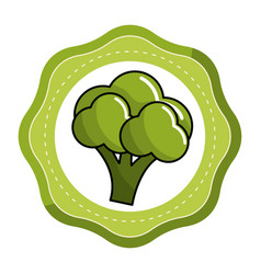 Emblem sticker healthy broccoli vegetable icon vector