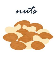 Nuts super vegetarian food vector