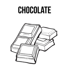 Pieces of black and white chocolate bar isolated vector image vector image