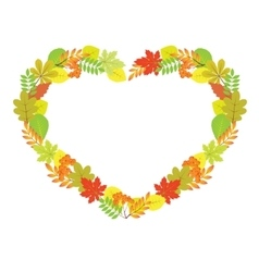 Heart from autumn leaves vector image