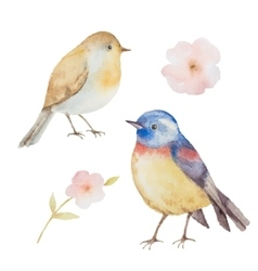 Set of watercolor birds and flowers vector image vector image