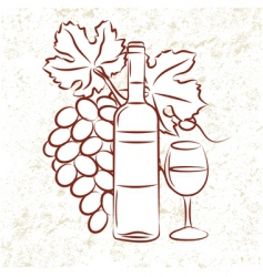 vine and grapes vector image vector image