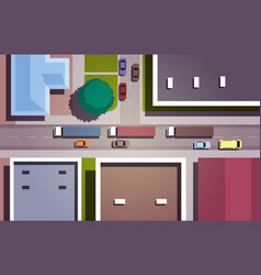 cars driving road city streets with buildings top vector image