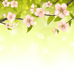 Cute Branches of Cherry Blossom Tree vector