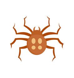 garden spider icon flat style vector image