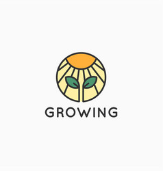 growing with sun and sprout on white background vector image