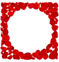 Red floral frame vector