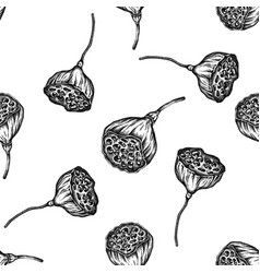 seamless pattern with black and white lotus vector image