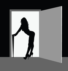 sexy and beauty girl front the door vector image