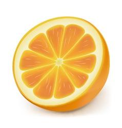 Photorealistic orange slice vector
