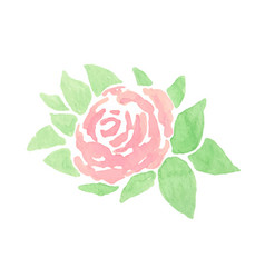 hand drawn abstract watercolor pink rose with vector image
