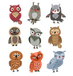 owls set vector image