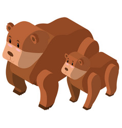 3d design for bear and cub vector image