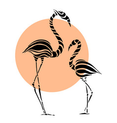 Abstract silhouettes of pink flamingo vector