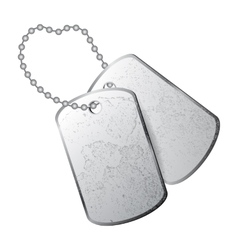 dog tag vector image