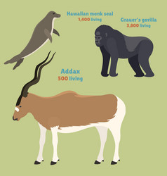 Gorila monkey rare animal monk addax vector