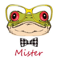 Portrait of a frog on a white background with glas vector