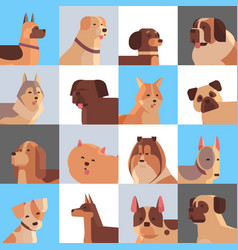 set different purebred dogs furry human friends vector image