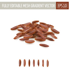 Small pile long grain red rice vector