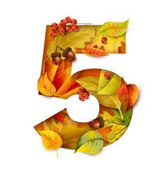autumn stylized alphabet with foliage digit5 vector image