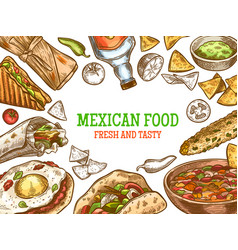 mexican food hand drawn traditional mexican vector image