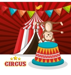 Monkey circus animal show isolated icon vector
