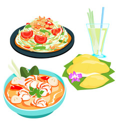 popular thai food papaya salad set vector image