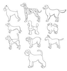 Set of cartoon dog breeds vector