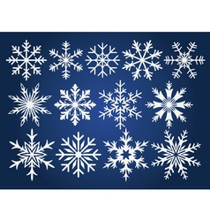 Snowflake winter set vector image