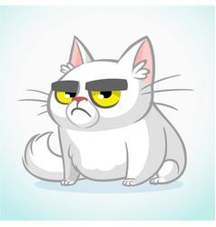 cartoon of grumpy white cat vector image