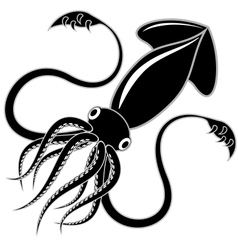 black squid vector image