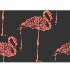 vintage of a pink flamingo seamless animal vector image