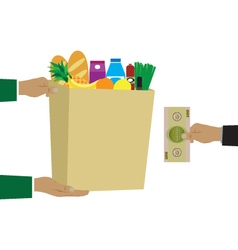 Concept for grocery delivery vector image