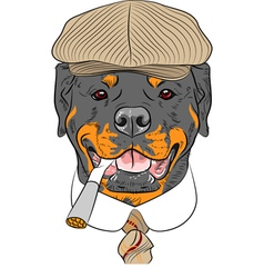 hipster dog Rottweiler breed vector image vector image