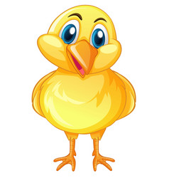 little chick with happy face vector image vector image