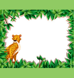 a cheetah in nature frame vector image