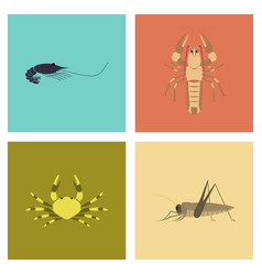 assembly flat shrimp lobster crab grasshopper vector image