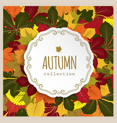 autumn label with yellow leaves vector image