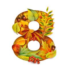 autumn stylized alphabet with foliage digit8 vector image