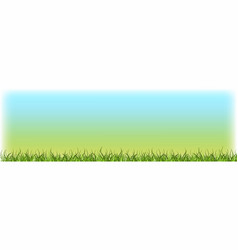 green grass lawn with blue sky nature spring vector image
