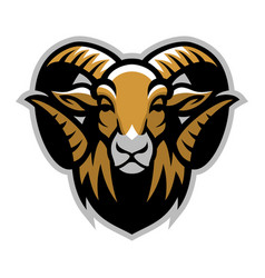 head of ram mascot vector image