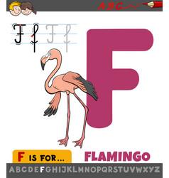 Letter f worksheet with cartoon flamingo bird vector