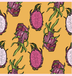seamless pattern with dragonfruit or pitahaya vector image