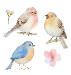 Set of watercolor birds and flowers vector image